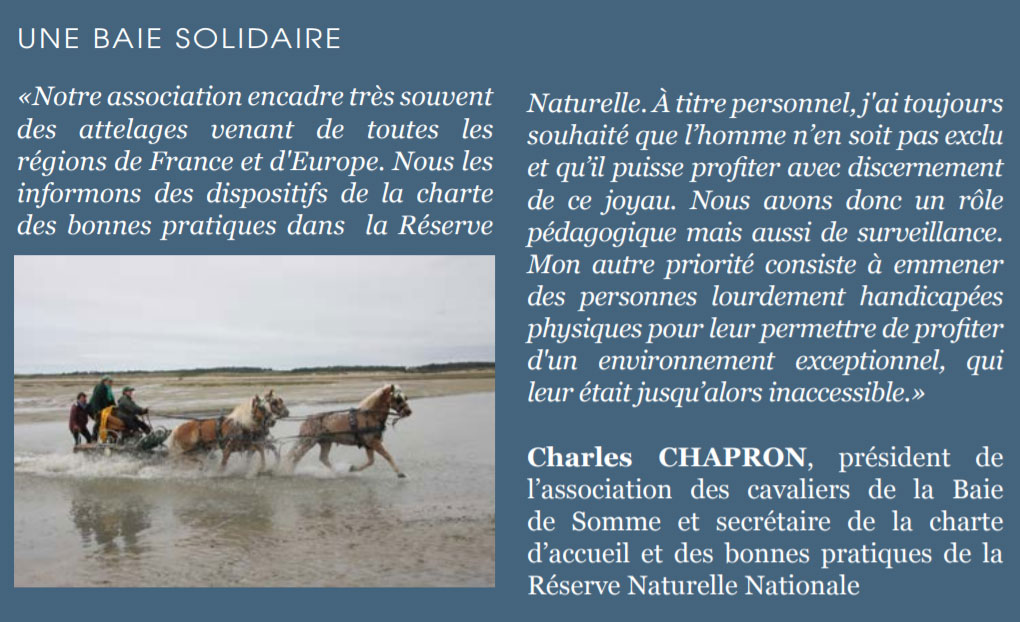 article Baie solidaire