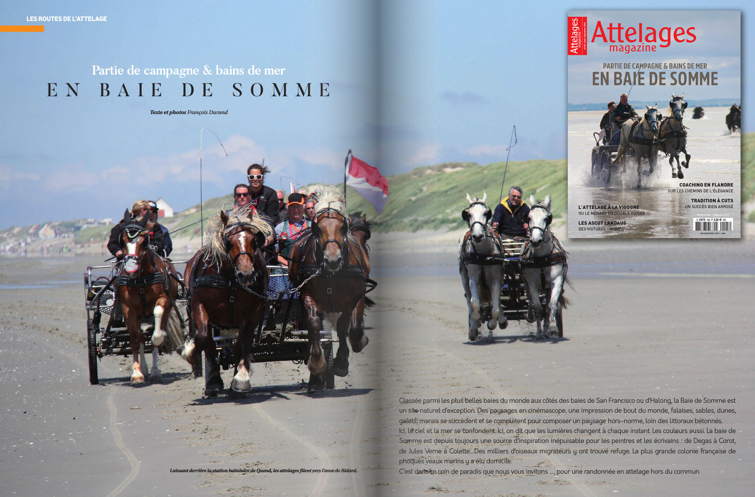 Attelage magazine 105
